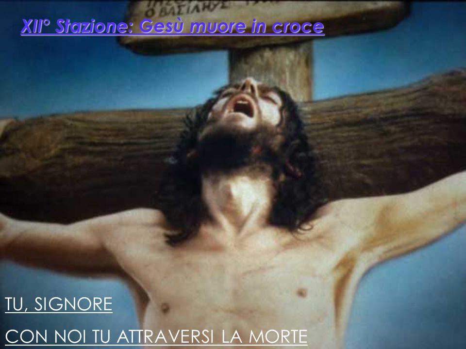 XII° Stazione: Gesù muore in croce