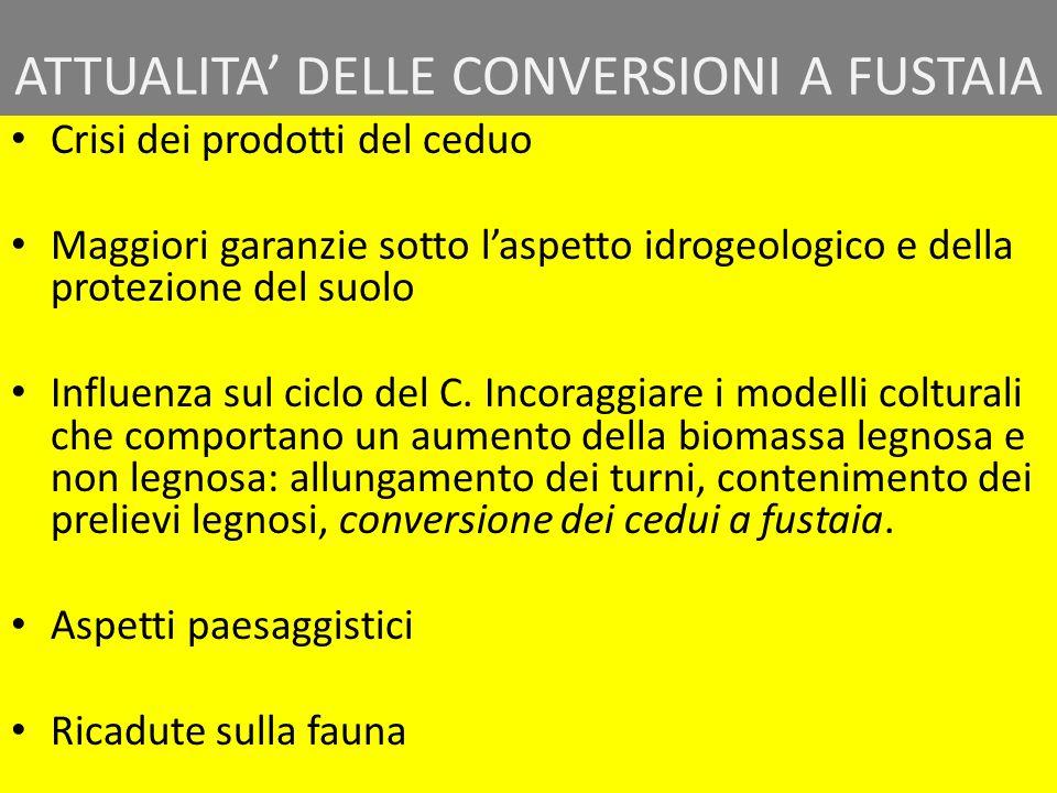 ATTUALITA' DELLE CONVERSIONI A FUSTAIA