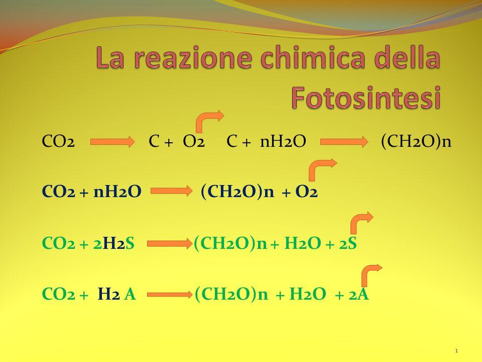 La reazione chimica della Fotosintesi