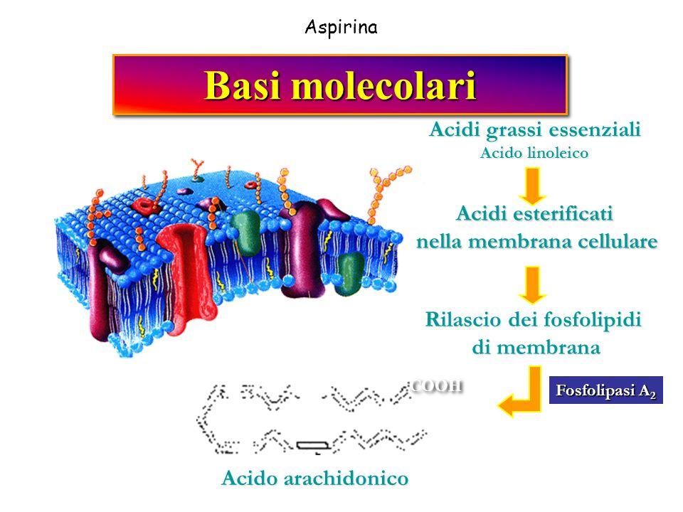 Basi molecolari Acidi grassi essenziali Acidi esterificati
