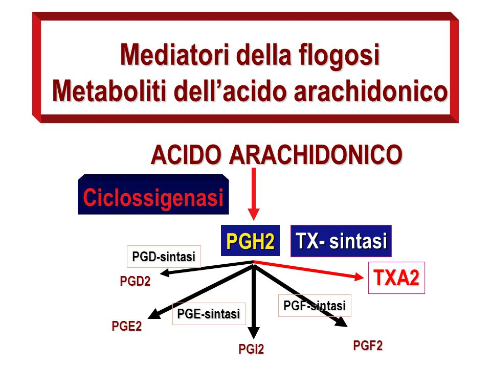 Mediatori della flogosi Metaboliti dell'acido arachidonico