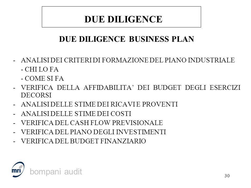 DUE DILIGENCE BUSINESS PLAN