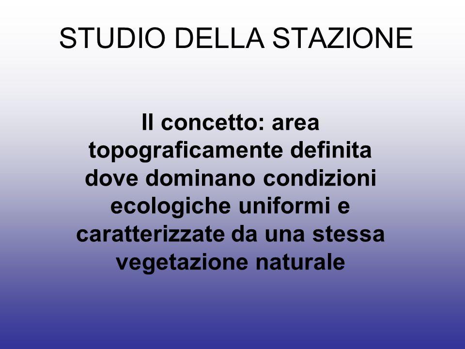 STUDIO DELLA STAZIONE