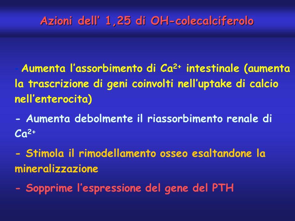Azioni dell' 1,25 di OH-colecalciferolo