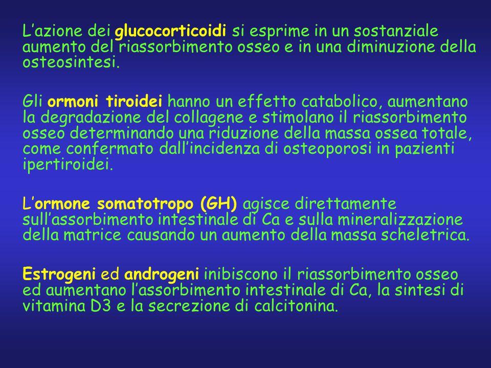 L'azione dei glucocorticoidi si esprime in un sostanziale aumento del riassorbimento osseo e in una diminuzione della osteosintesi.