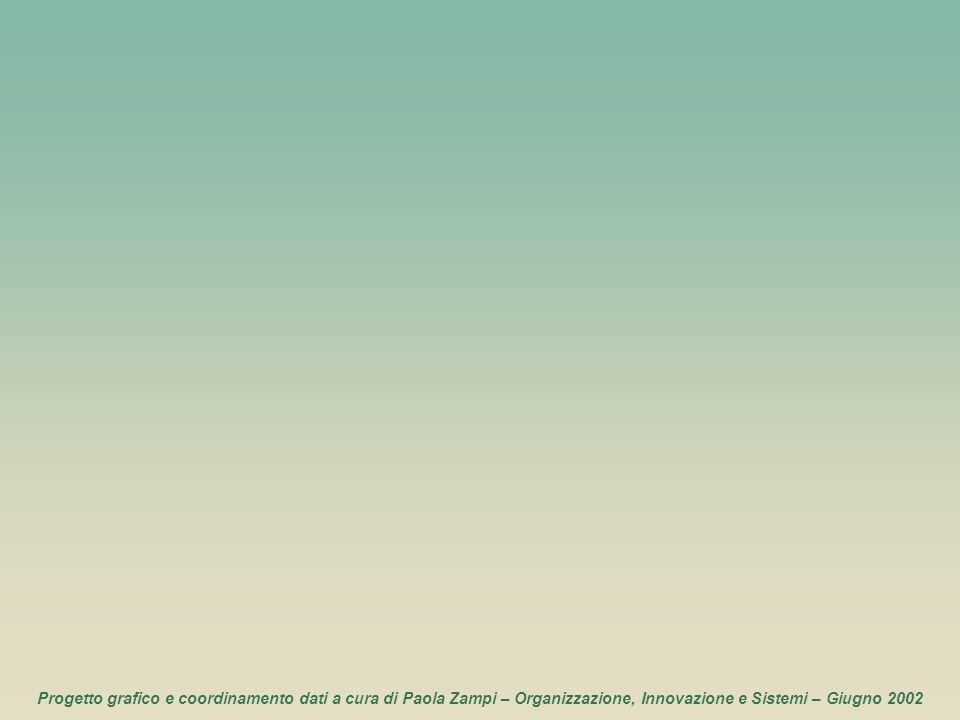 Progetto grafico e coordinamento dati a cura di Paola Zampi – Organizzazione, Innovazione e Sistemi – Giugno 2002