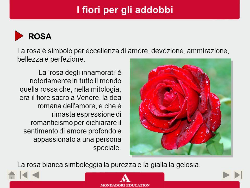 I fiori per gli addobbi ROSA