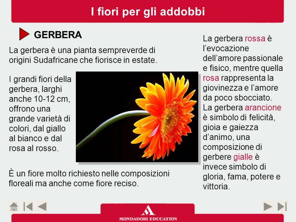 I fiori per gli addobbi GERBERA