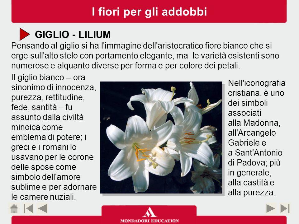 I fiori per gli addobbi GIGLIO - LILIUM