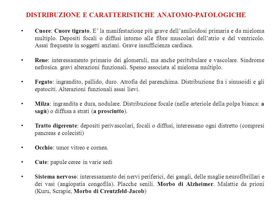 DISTRIBUZIONE E CARATTERISTICHE ANATOMO-PATOLOGICHE