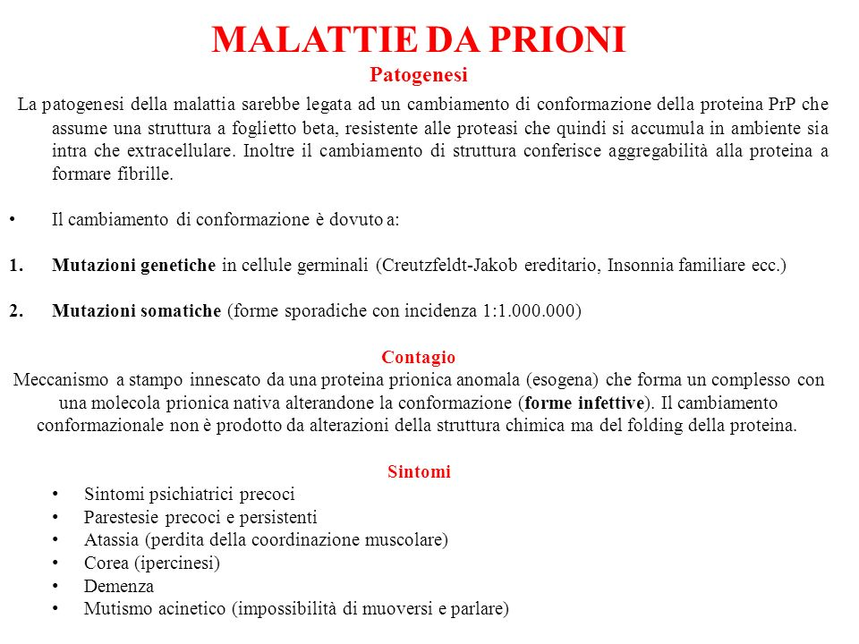 MALATTIE DA PRIONI Patogenesi.