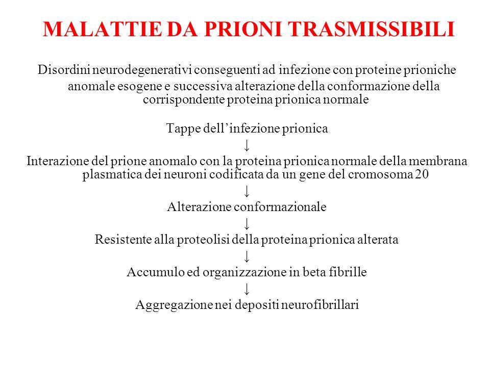 malattie da prioni TRASMISSIBILI