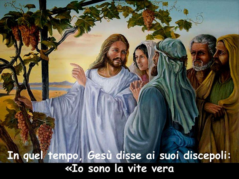 In quel tempo, Gesù disse ai suoi discepoli: «Io sono la vite vera