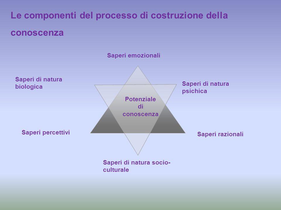 Le componenti del processo di costruzione della conoscenza