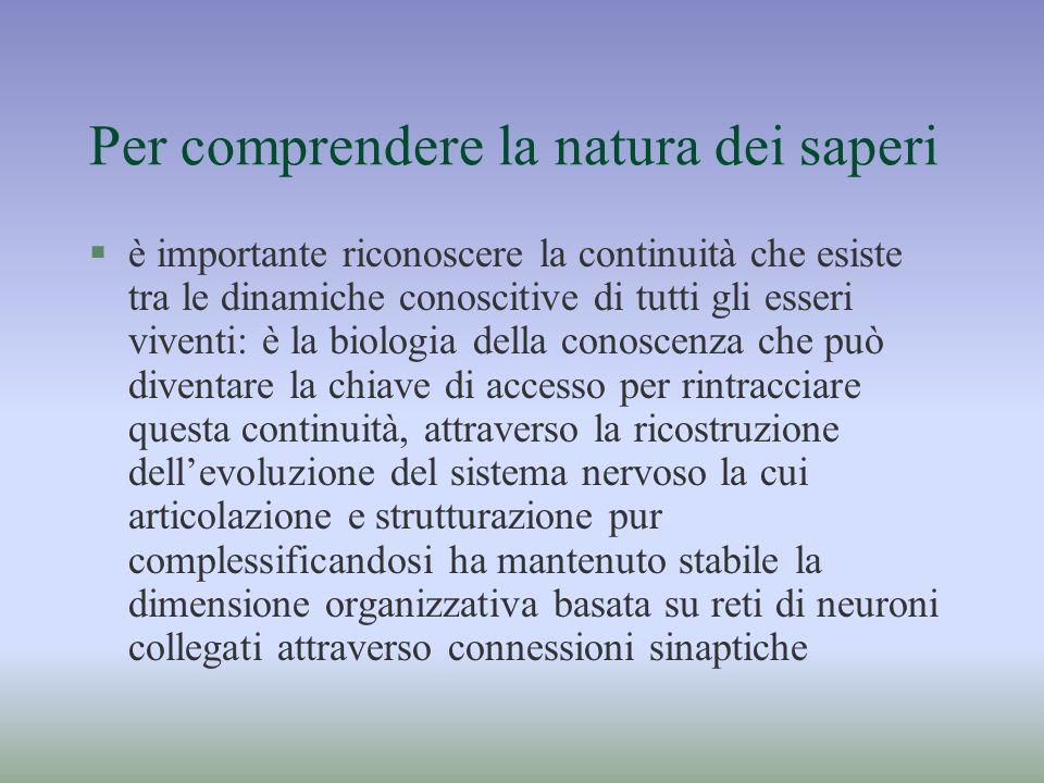 Per comprendere la natura dei saperi