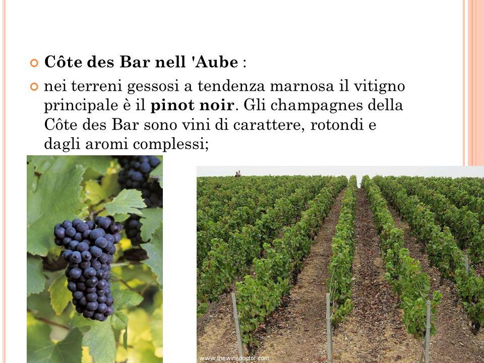 Côte des Bar nell Aube :