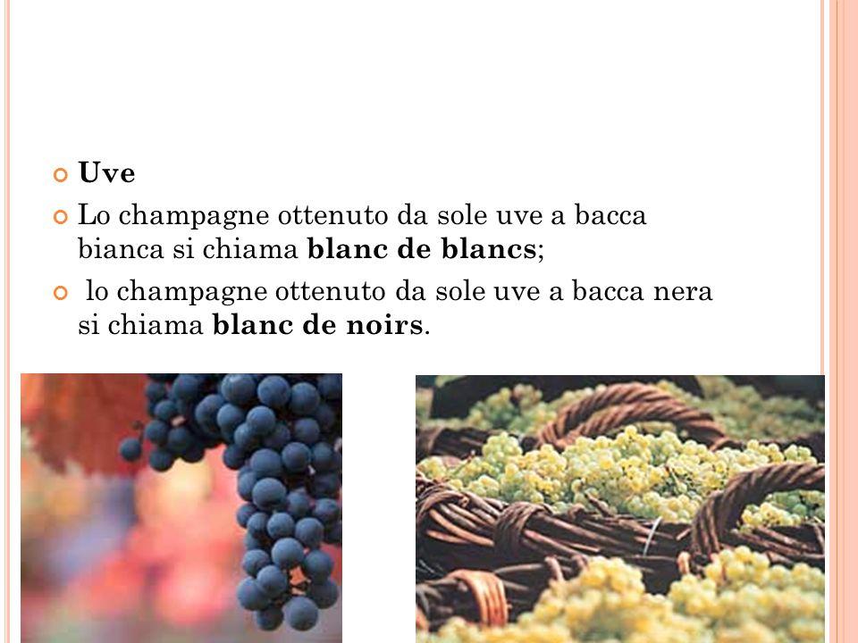 Uve Lo champagne ottenuto da sole uve a bacca bianca si chiama blanc de blancs;