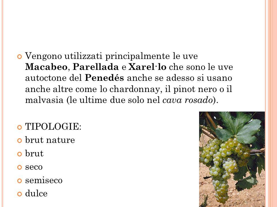 Vengono utilizzati principalmente le uve Macabeo, Parellada e Xarel·lo che sono le uve autoctone del Penedés anche se adesso si usano anche altre come lo chardonnay, il pinot nero o il malvasia (le ultime due solo nel cava rosado).