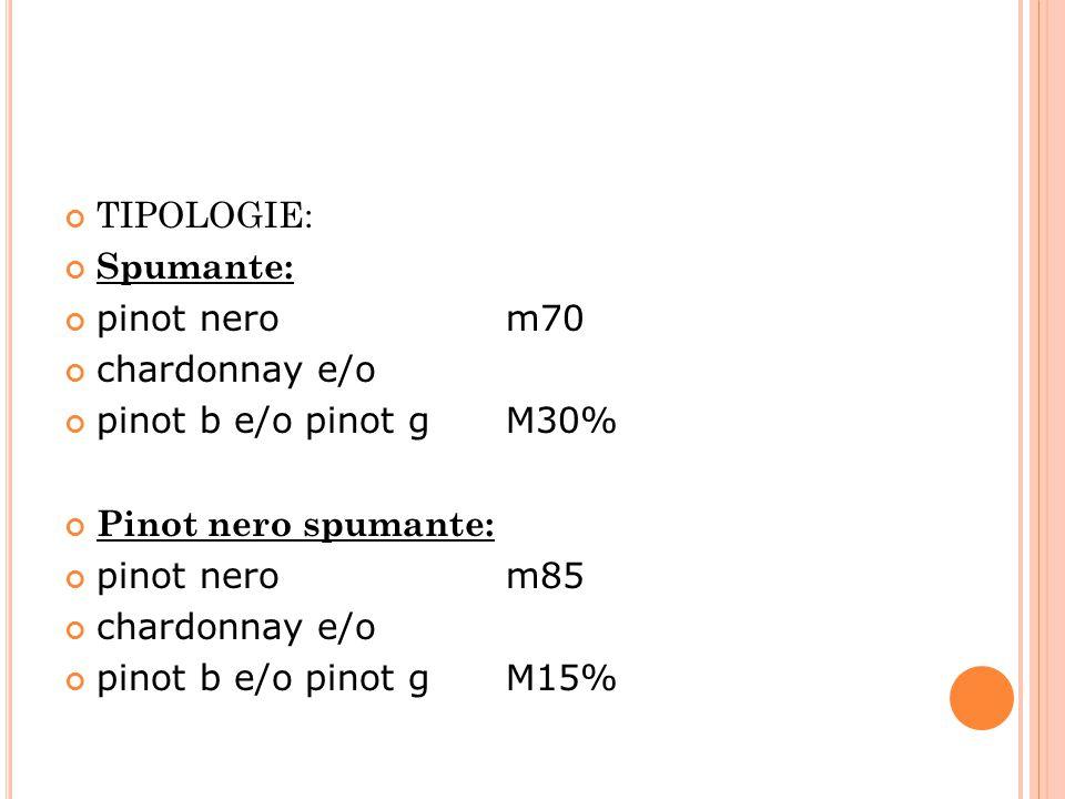 TIPOLOGIE: Spumante: pinot nero m70. chardonnay e/o. pinot b e/o pinot g M30%