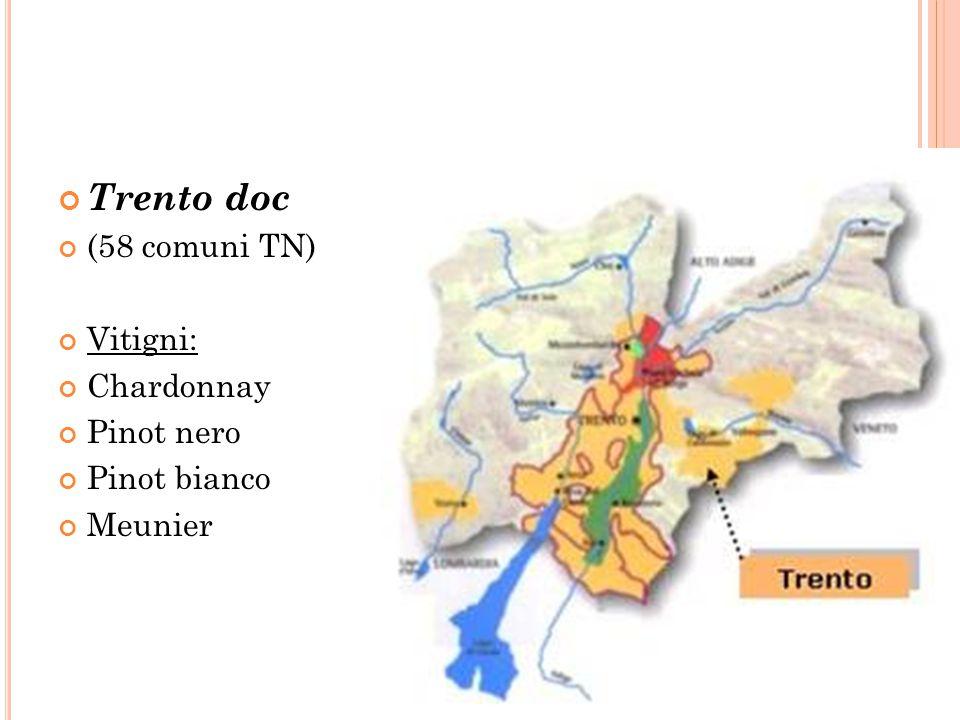 Trento doc (58 comuni TN) Vitigni: Chardonnay Pinot nero Pinot bianco