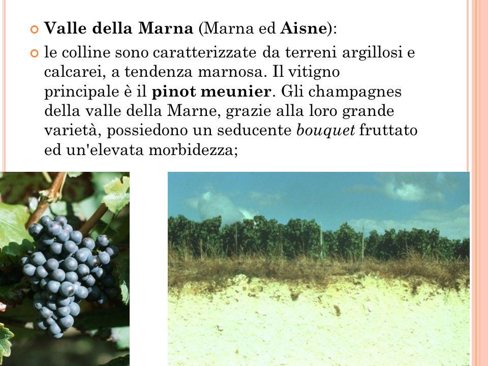 Valle della Marna (Marna ed Aisne):