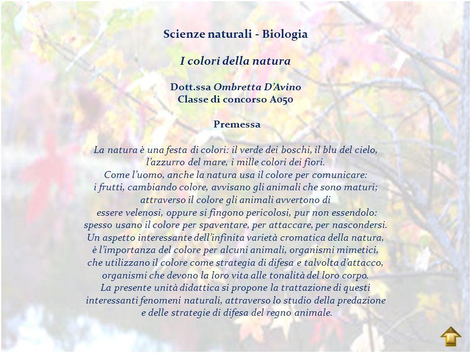Scienze naturali - Biologia I colori della natura