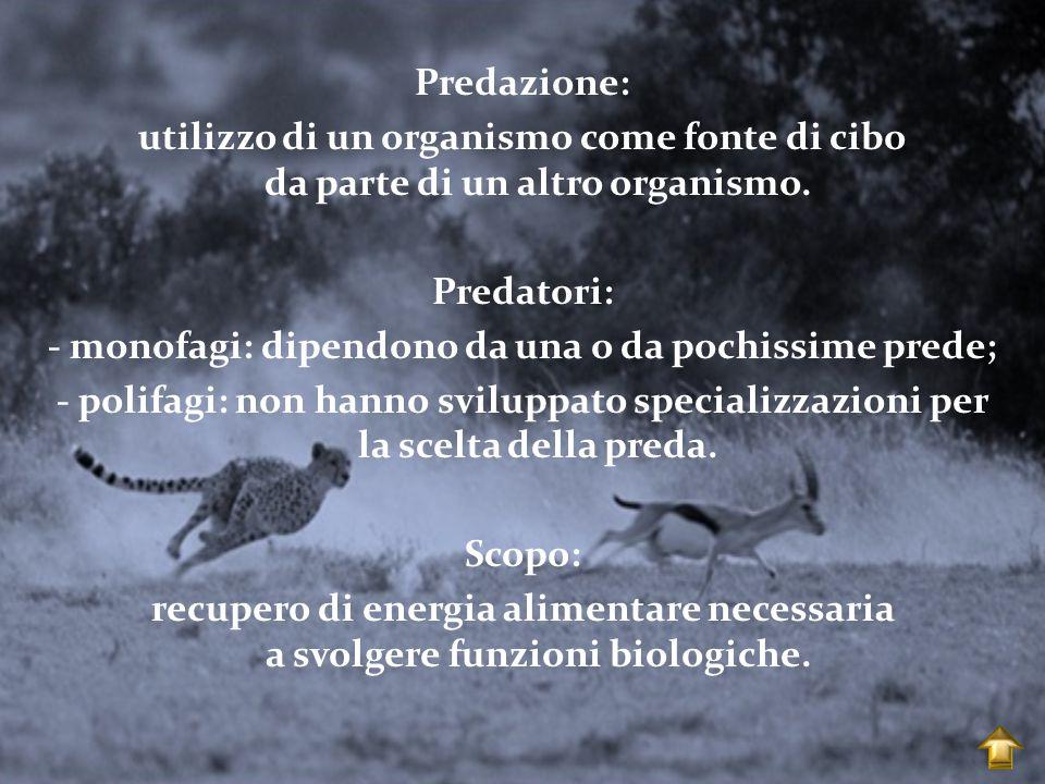 Predazione: utilizzo di un organismo come fonte di cibo da parte di un altro organismo.