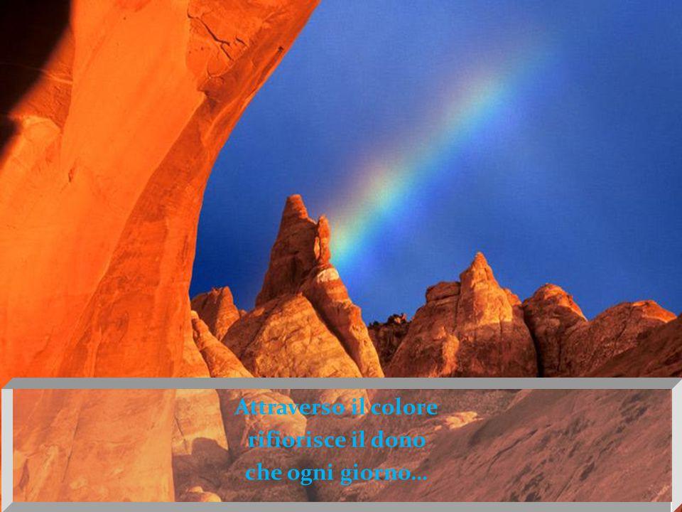 Attraverso il colore rifiorisce il dono che ogni giorno…