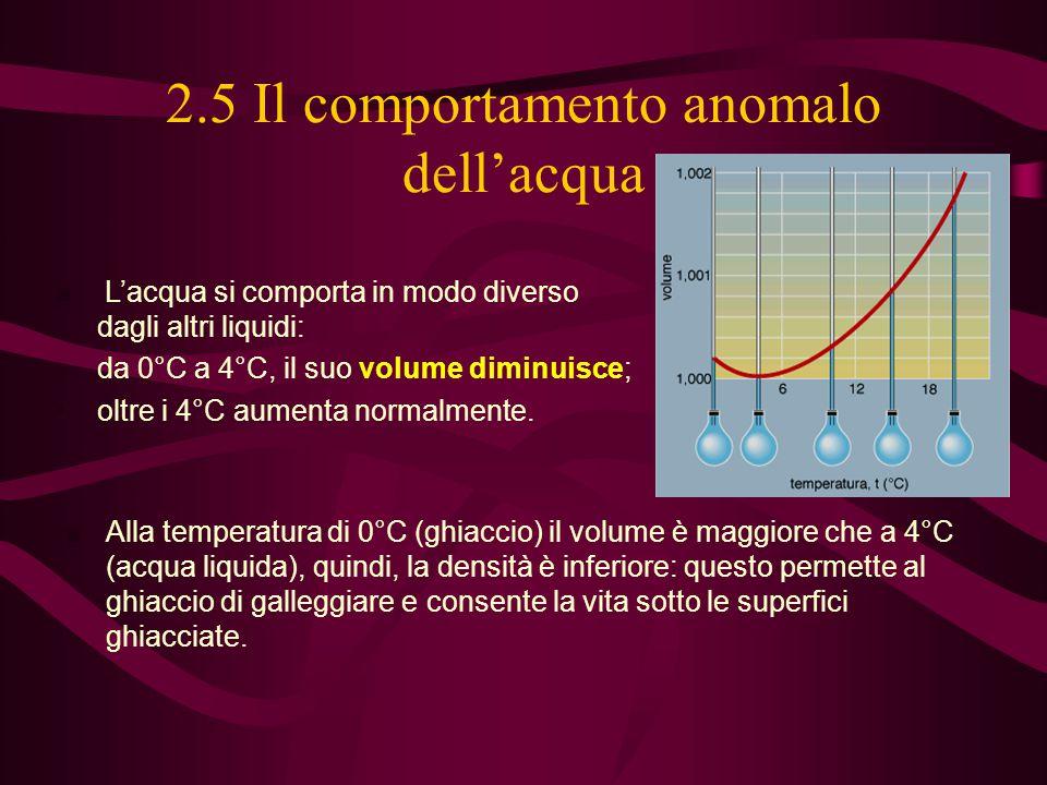 2.5 Il comportamento anomalo dell'acqua