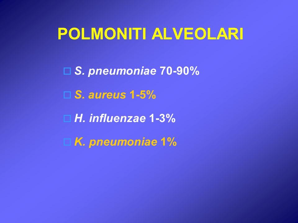 POLMONITI ALVEOLARI S. pneumoniae 70-90% S. aureus 1-5%