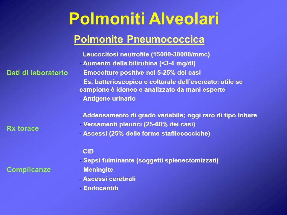 Polmonite Pneumococcica