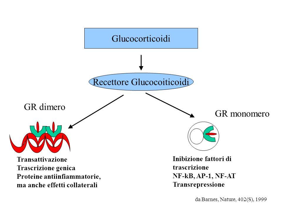 Recettore Glucocoiticoidi