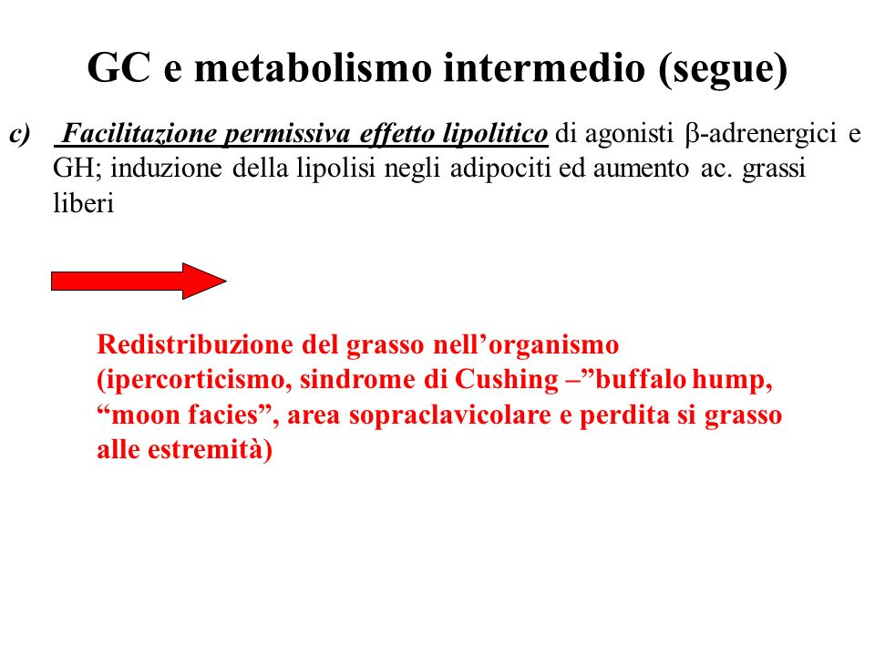 GC e metabolismo intermedio (segue)