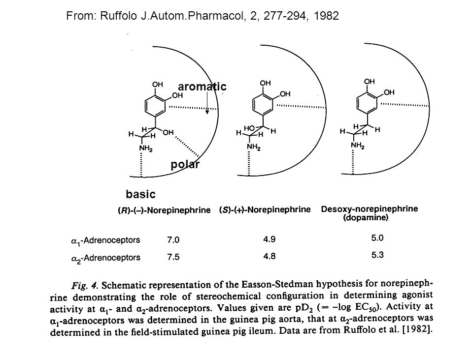 From: Ruffolo J.Autom.Pharmacol, 2, 277-294, 1982