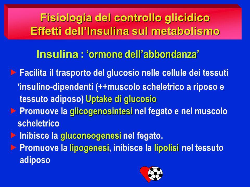 Fisiologia del controllo glicidico Effetti dell'Insulina sul metabolismo