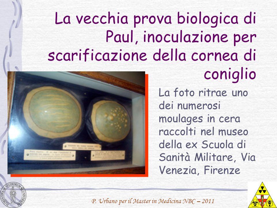La vecchia prova biologica di Paul, inoculazione per scarificazione della cornea di coniglio