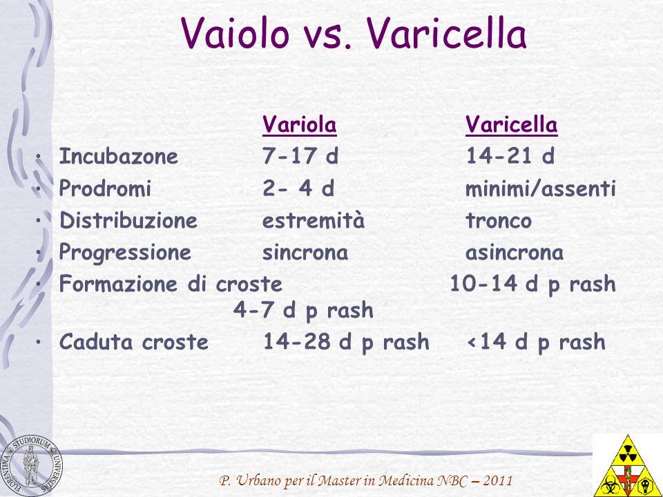 Vaiolo vs. Varicella Variola Varicella Incubazone 7-17 d 14-21 d