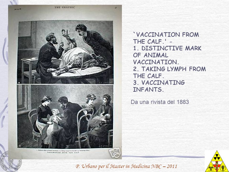 `VACCINATION FROM THE CALF. -