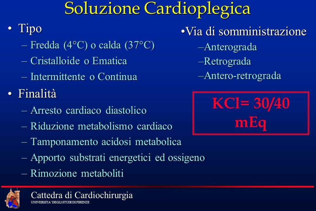Soluzione Cardioplegica