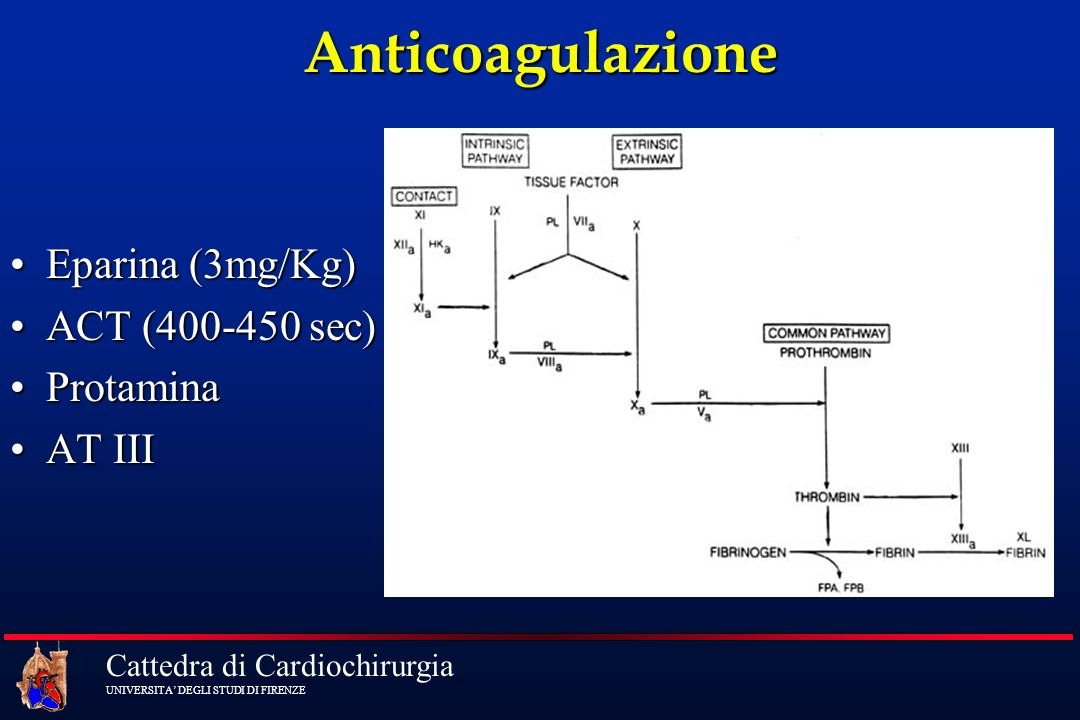 Anticoagulazione Eparina (3mg/Kg) ACT (400-450 sec) Protamina AT III
