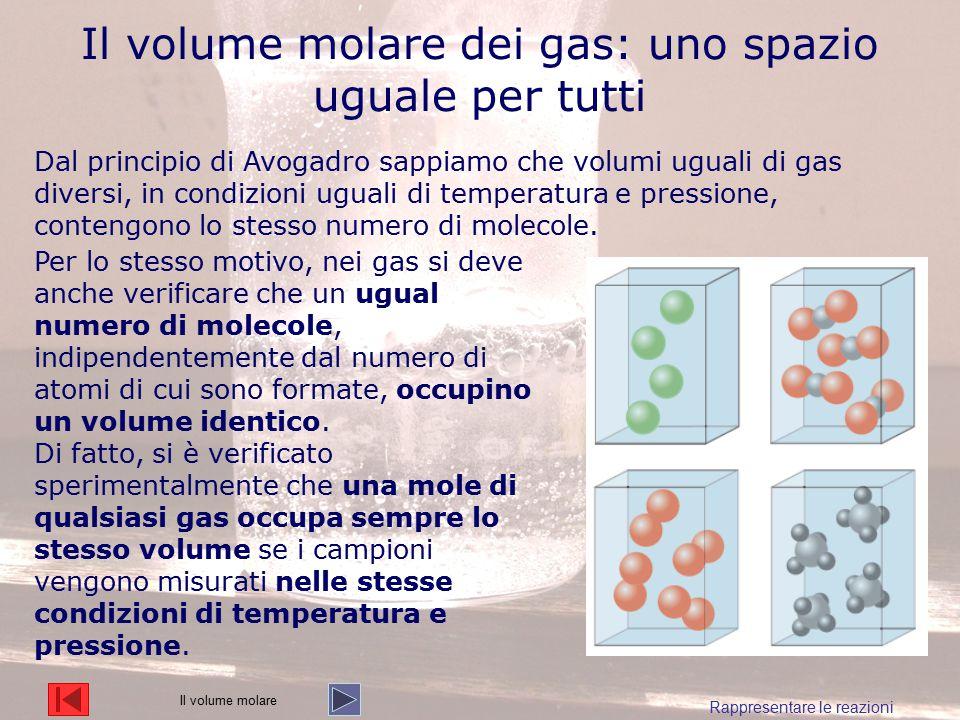 Il volume molare dei gas: uno spazio uguale per tutti