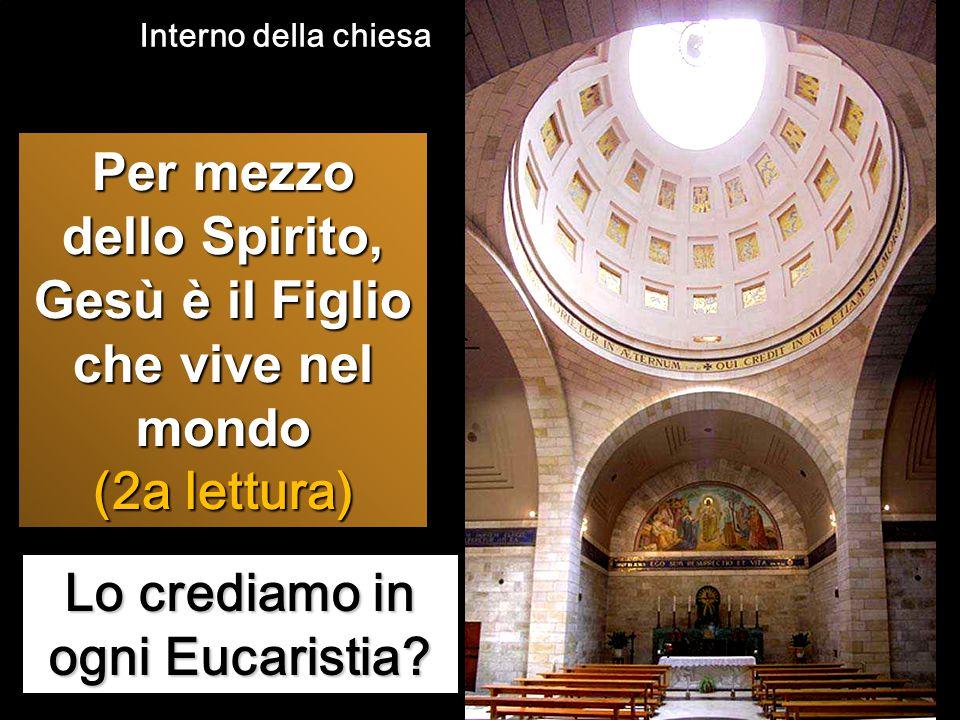Lo crediamo in ogni Eucaristia