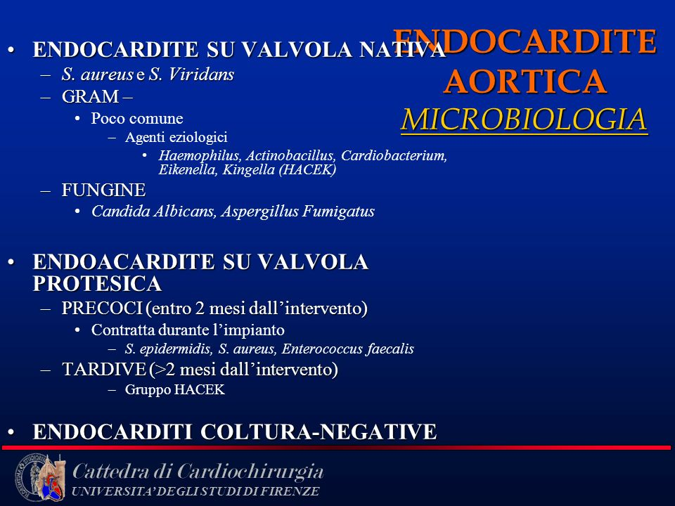 ENDOCARDITE AORTICA MICROBIOLOGIA