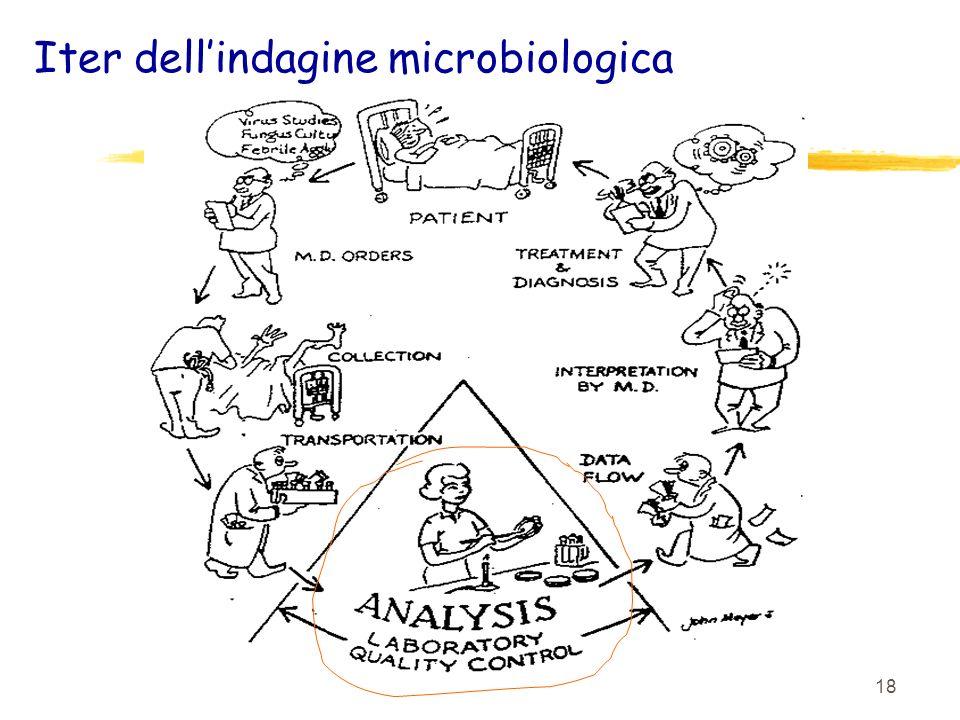 Iter dell'indagine microbiologica