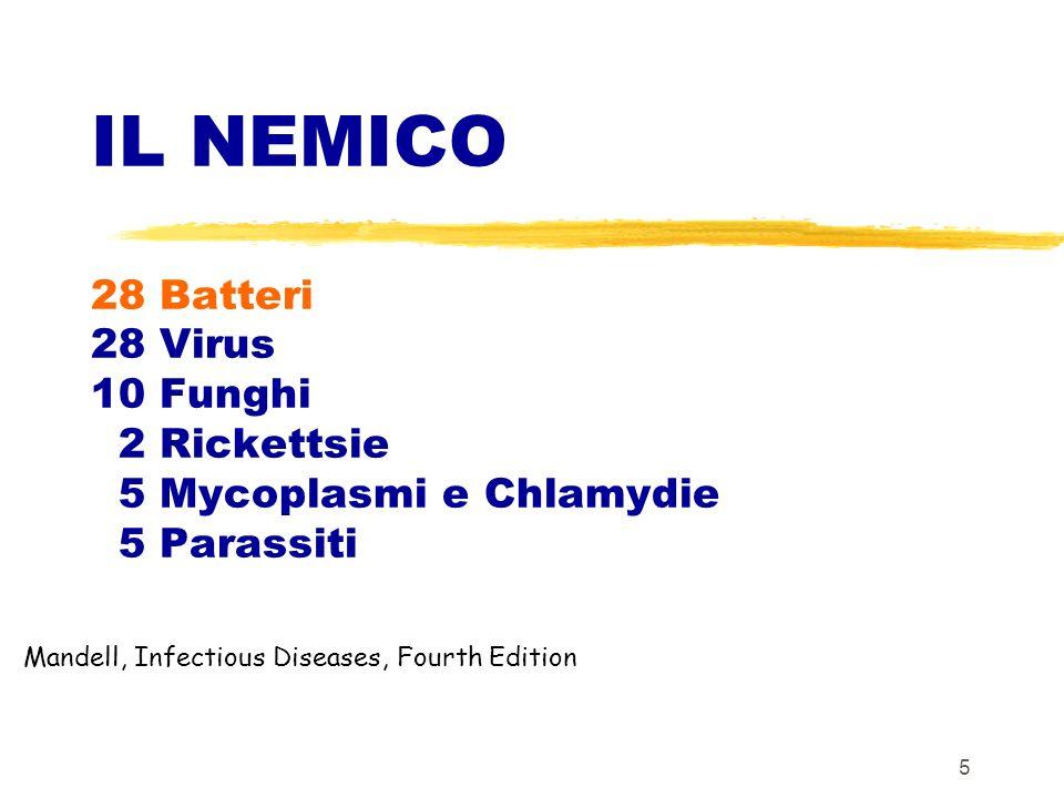 IL NEMICO 28 Batteri 28 Virus 10 Funghi 2 Rickettsie 5 Mycoplasmi e Chlamydie 5 Parassiti