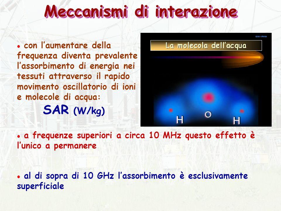 Meccanismi di interazione