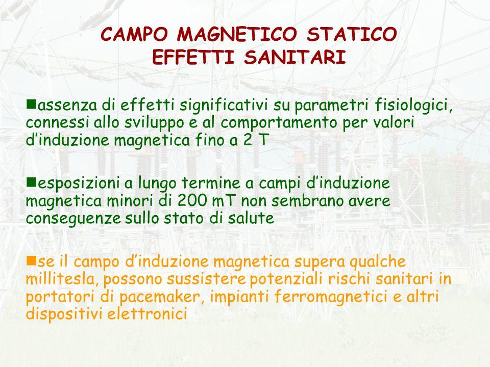 CAMPO MAGNETICO STATICO EFFETTI SANITARI