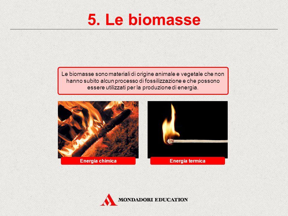 5. Le biomasse