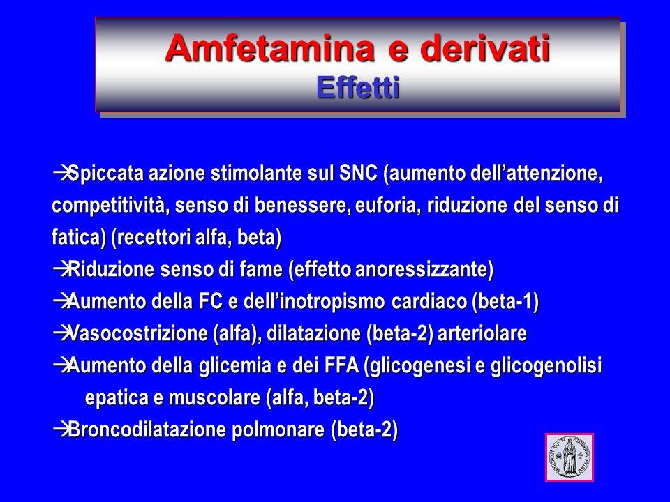 Amfetamina e derivati Effetti