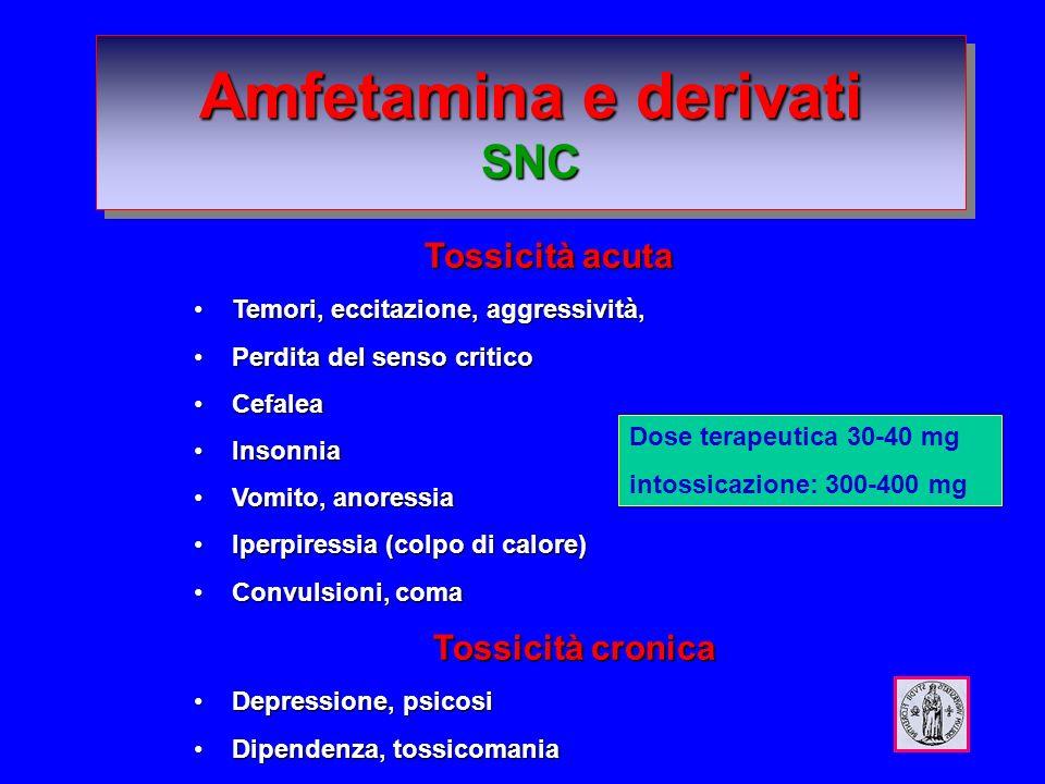 Amfetamina e derivati SNC